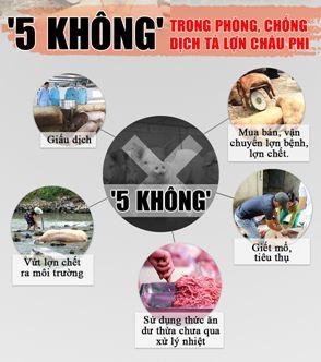 """Nguyên tắc """"5 không"""" – 10 cấm – 8 giải pháp trong phòng chống dịch tả heo châu Phi"""
