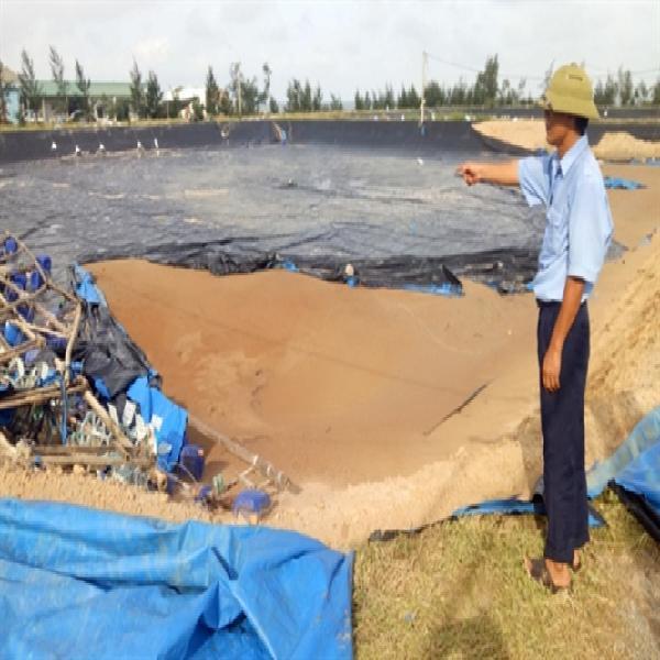 Hà Tĩnh: 3.100ha thủy sản mất trắng do bão