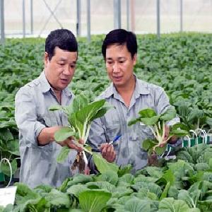 Nhiều DN chưa biết gì về gói 100.000 tỷ đồng cho nông nghiệp CNC!