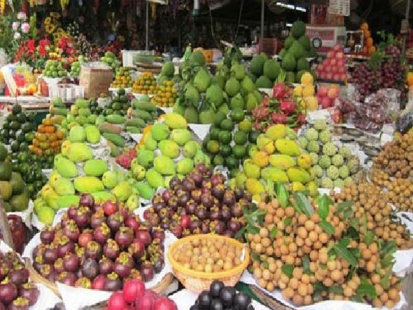 Xuất khẩu rau quả xác lập kỷ lục mới