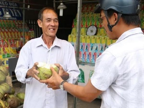 Thực hư thông tin bơm hóa chất tạo ngọt vào quả dừa tươi ở Bến Tre