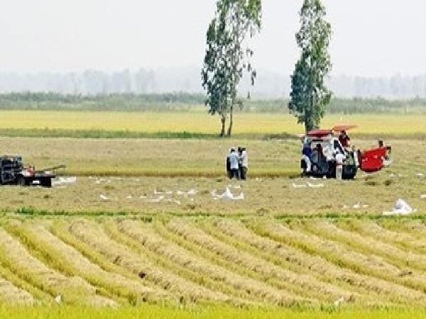 Phải thay đổi tư duy làm nông nghiệp