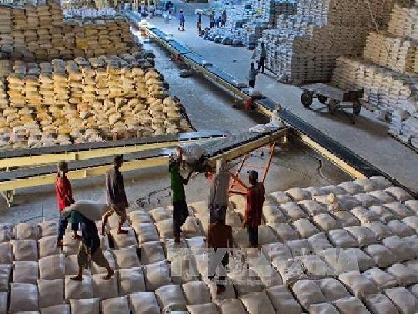 Indonesia có kế hoạch nhập khẩu gạo chất lượng cao của Việt Nam