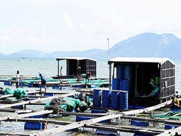 Người nuôi trồng thủy sản mong được hỗ trợ