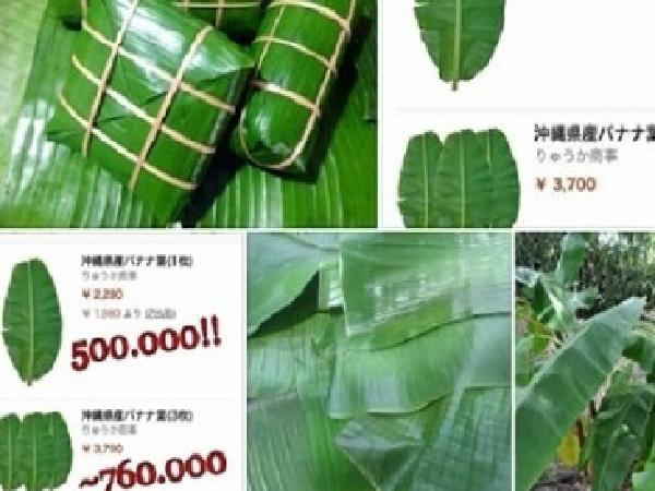 Lá chuối Việt Nam được rao bán tại Nhật giá 500.000 đồng/chiếc