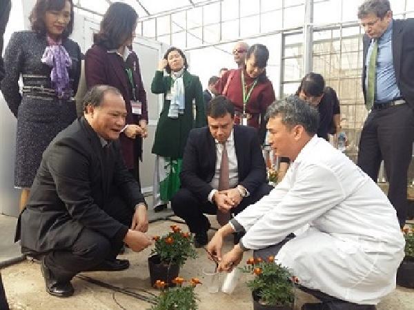 Đến 2020 Việt Nam có 500.000ha đất được tưới nhỏ giọt