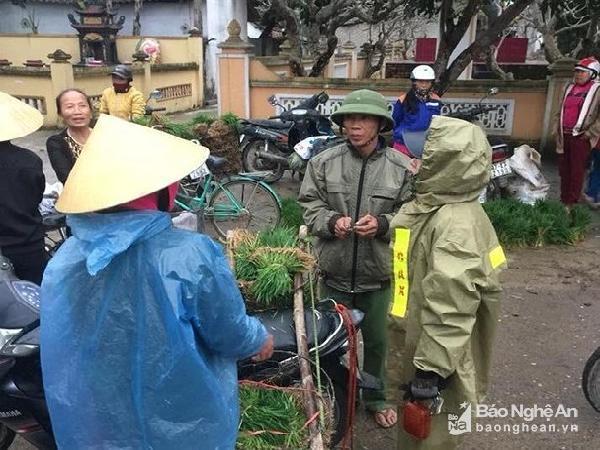 Nghệ An: Nông dân bán mạ chợ ra Tết, thu tiền triệu