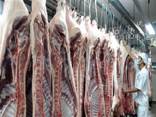 """Giá heo hơi hôm nay 1/3: Mơ giá tăng từ """"đại dự án"""" chế biến thịt heo ở Hà Nam"""
