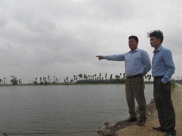 'Choáng' với trang trại nuôi cá theo công nghệ Thái Lan, thu 1 tỷ đồng/năm