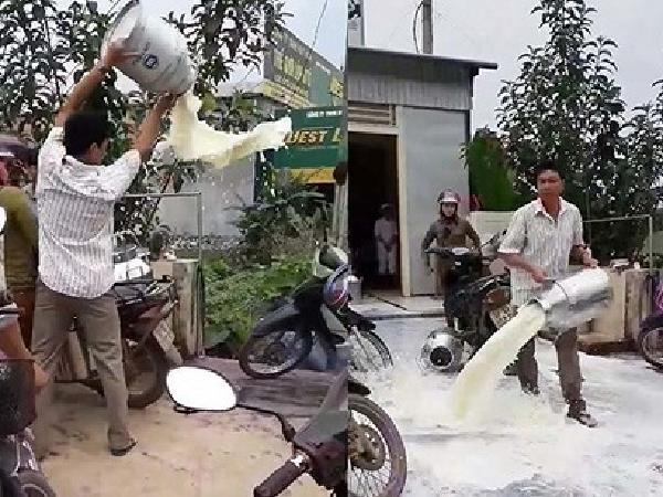 Nông dân đổ sữa, doanh nghiệp chính thức lên tiếng