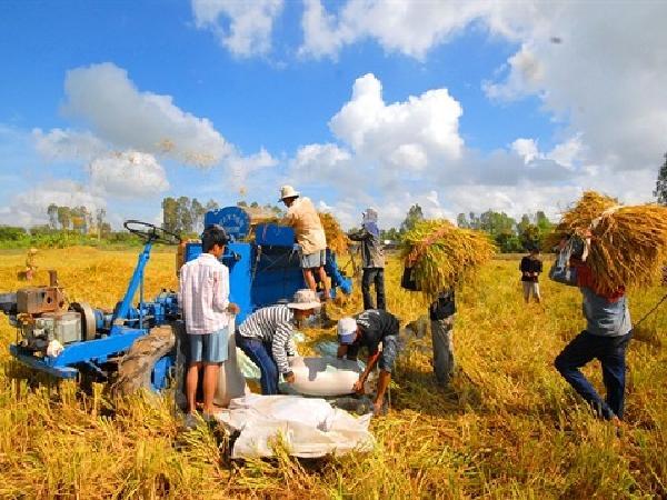 Những tín hiệu khả quan của ngành nông nghiệp năm 2018