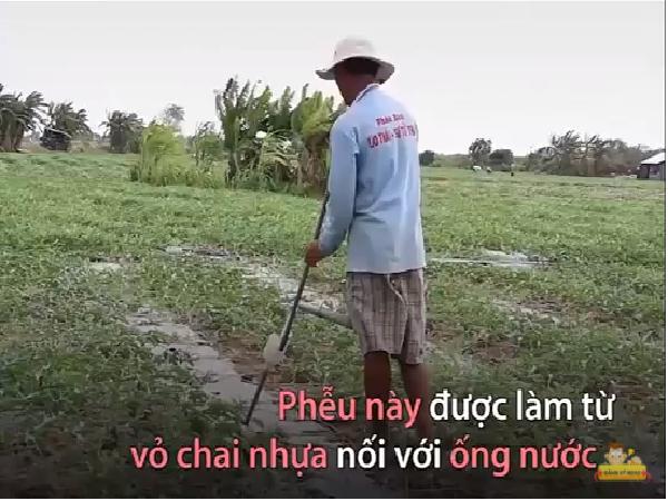 Rẻ mà hay: phễu tiết kiệm nước tự chế để tưới cây mùa hạn mặn miền tây