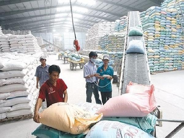 Quy định mới về điều kiện kinh doanh XK gạo