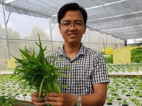 TP. Hồ Chí Minh: Trồng rau thủy canh công nghệ cao