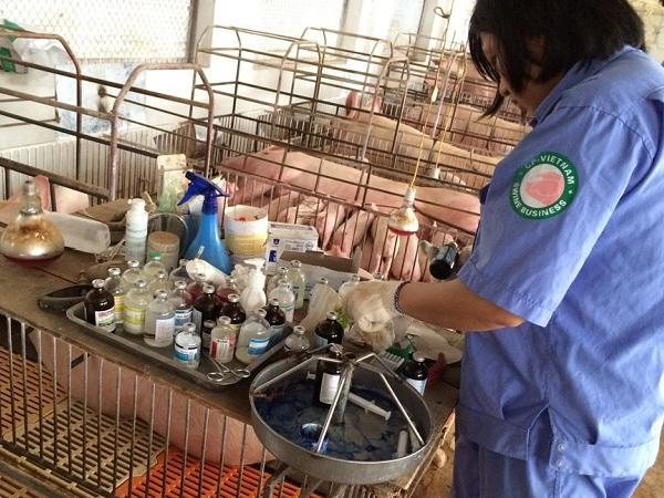 N-Sử dụng vi sinh hữu ích trong thức ăn chăn nuôi