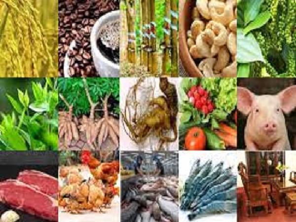 Đề xuất 15 sản phẩm nông sản chủ lực quốc gia