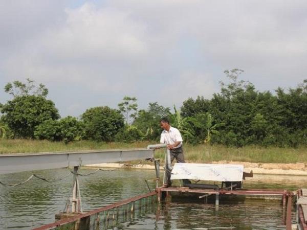 Nuôi thủy sản theo công nghệ 'sông trong ao'