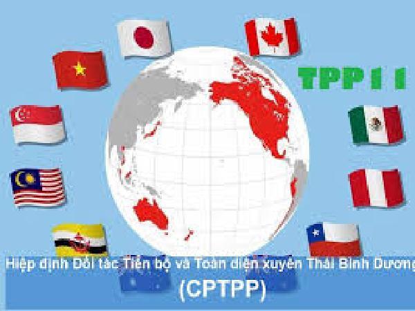 CPTPP - 6 phần thách thức 4 phần cơ hội cho 10 triệu hộ chăn nuôi VN