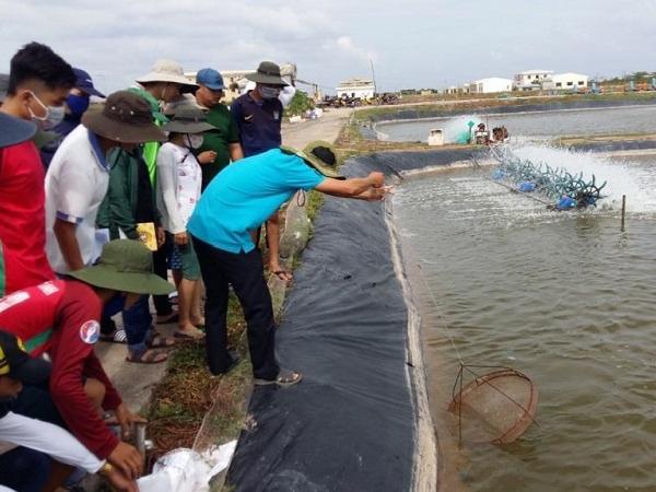 N-Một số giải pháp nuôi thủy sản trong điều kiện biến đổi khí hậu ở Đồng bằng sông Cửu Long