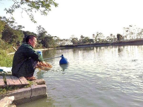 NT-Biện pháp giữ ấm, chống rét cho thủy sản trong mùa đông
