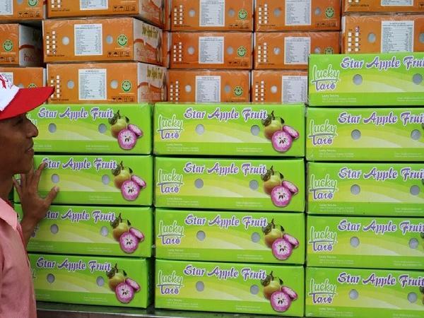 Vú sữa Việt Nam lọt top hoa quả xa xỉ ở Mỹ: 350.000 đồng/kg