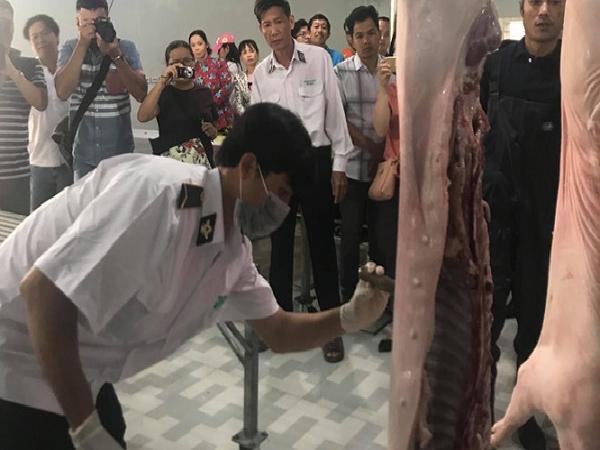 Chỉ mất 2 phút 42 giây để Nguyễn Đan Hậu Giang giết mổ một con heo