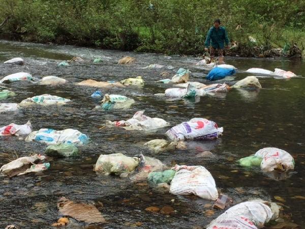 Kinh hoàng xác lợn chết nổi lềnh bềnh đầy sông