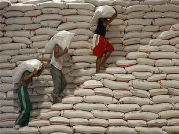 Iraq, Malaysia và Trung Quốc đua nhau nhập khẩu gạo Việt Nam