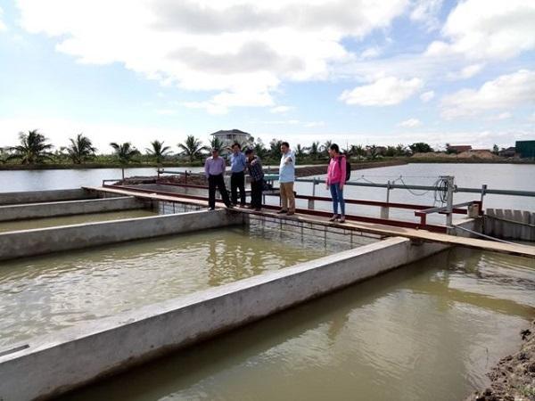 """Công nghê """"sông trong ao"""", hướng phát triển mới cho người nuôi thủy sản"""