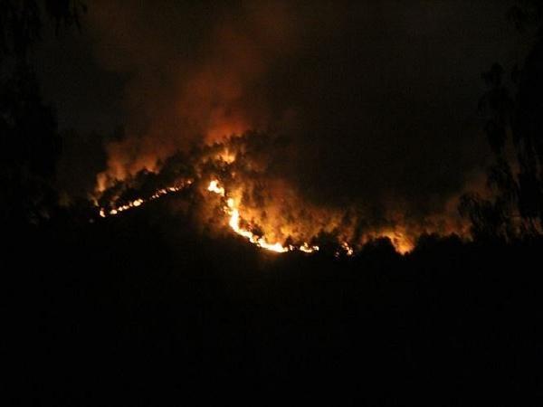 Công điện khẩn tăng cường phòng cháy,chữa cháy rừng