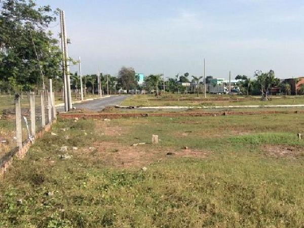 Thủ tục chuyển đất trồng cây lâu năm thành đất ở