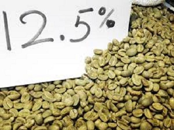 TH-Các phương pháp sơ chế cà phê hiện nay