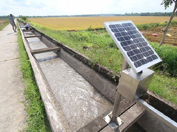 Trồng lúa công nghệ cao: giảm chi phí, tăng lợi nhuận
