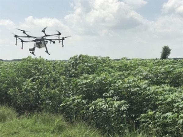 Mô hình máy bay không người lái (UAV) phun thuốc trừ sâu