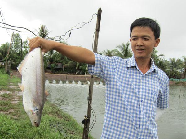 Thu tiền tỷ nhờ nuôi cá bông lau