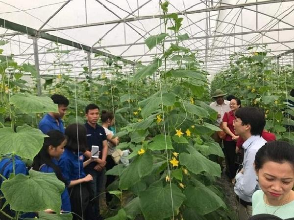 Ứng dụng công nghệ cao - làm giàu từ nông nghiệp