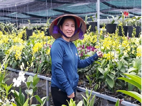 Thu tiền tỷ nhờ trồng lan công nghệ cao