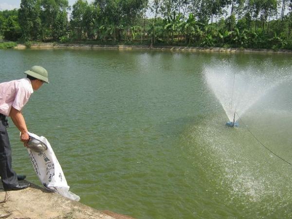 NT-Một số hóa chất sử dụng trong nuôi trồng thủy sản