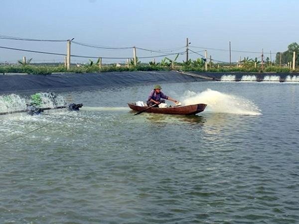 NT-Phòng chống, khắc phục hậu quả do bão lũ đối với thủy sản nuôi