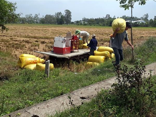 """Thách nông dân bán được tôm, lúa nếu không qua """"cò""""?"""