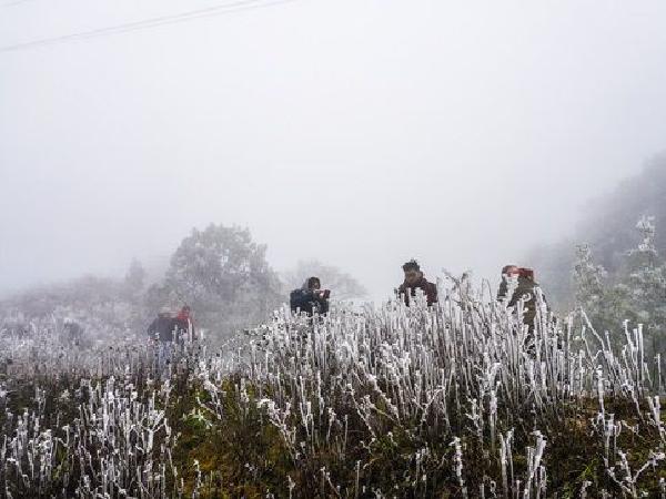 Ngày mai: Miền Bắc sẽ xuất hiện băng giá, Trung Bộ tiếp tục mưa rét