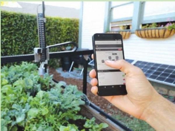 Đa dạng thiết bị thông minh tự động tưới vườn cây