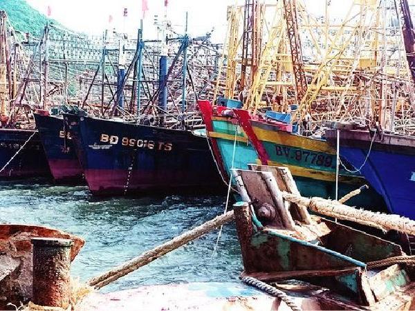 Ngư dân Bình Định khốn khổ, mòn mỏi chờ đợi bảo hiểm tàu cá