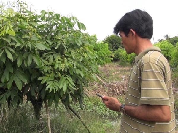 Ứng dụng điện thoại thông minh tưới phun cho cây trồng