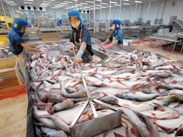 Trung Quốc có nhu cầu nhập khẩu trở lại nhưng muốn ép giá thủy sản Việt