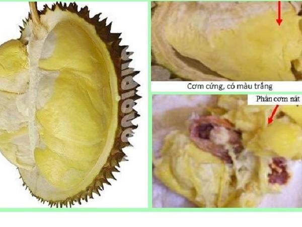 CS-Cách khắc phục trái sầu riêng bị sượng
