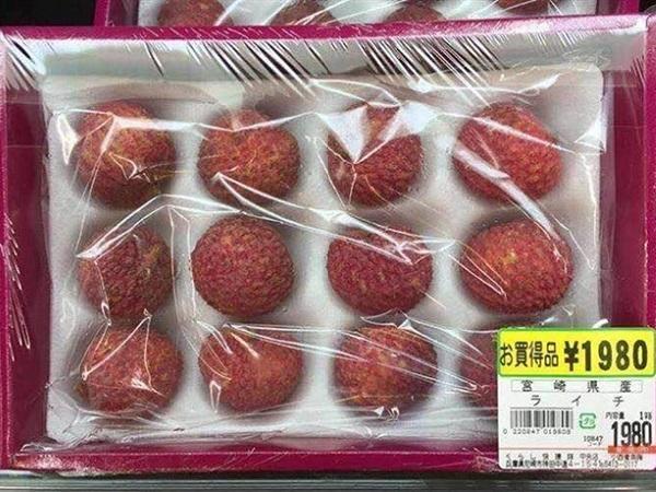 Vải thiều xuất khẩu sang Nhật Bản được xử lí thế nào?