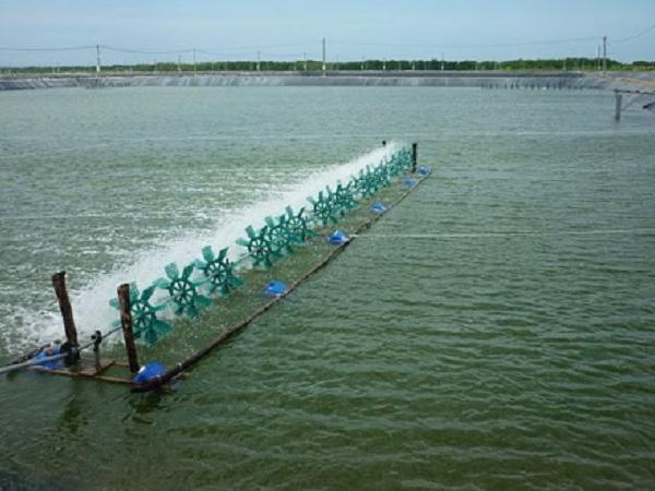 XL-Kiểm soát và điều chỉnh nhiệt độ nước ao nuôi