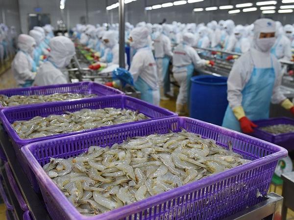 Nhập khẩu tôm tại mỹ tiếp tục tăng bất chấp dịch COVID-19