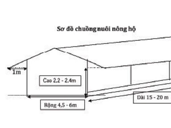 N-Kỹ thuật xây dựng chuồng trại chăn nuôi gà nông hộ